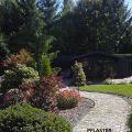 gartenweg-natursteinpflaster-geschwungen
